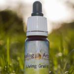 Living Grail 6