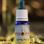 Living Arc 3