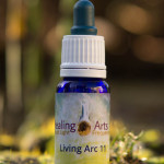 Living Arc 11