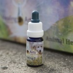 Animal Healing 7