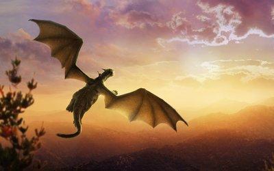 Ontwaak je draak! 18 of 30 september voor volwassenen