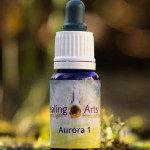 Aurora 1_
