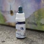 Animal Healing 6_