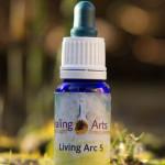 Living Arc 5