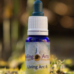 Living Arc 6