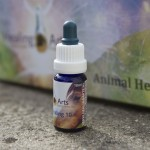 Animal Healing 10