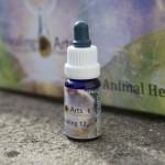 Animal Healing 12