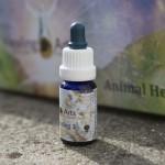 Animal Healing 3