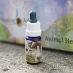 Animal Healing 5