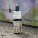 Animal Healing 8